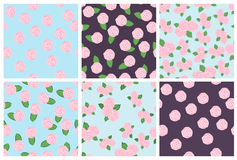 Set of seamless floral patterns of roses Stock Photography