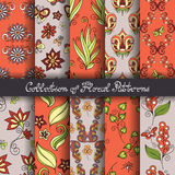 Set of 10 Seamless Floral Patterns. (Vector). Hand Drawn Floral Textures, Decorative Flowers with Butterflies and Other Insects royalty free illustration