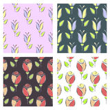 Set of seamless floral vector patterns. Colorful backgrounds with flowers. Decorative repeating ornament.Graphic vector illustration. Series of Floral and Royalty Free Stock Image