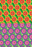 Set of seamless flower pattern Royalty Free Stock Images