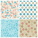 Set of seamless flower patterns. For textiles, interior design, for book design, website background Stock Photography