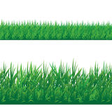 Set of seamless grass border isolated on white background. Vector illustration Stock Photos