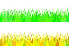 Set of seamless the grass. Stock Images