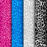 Set of seamless leopard patterns royalty free illustration