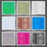 Set of seamless leopard prints. Set of leopard seamless patterns. Vector EPS10 illustration Stock Photography