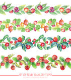 Set with seamless ornamental floral and berries stripes. Stock Images