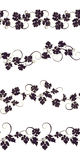 Set of seamless ornaments with vines of grapes. royalty free illustration