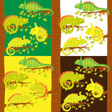 Set of seamless pattern with chameleons on the tree Stock Images