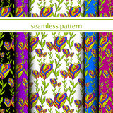 Set of seamless pattern with flowers. vector Stock Images