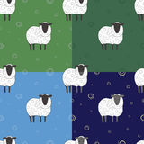 Set of seamless pattern with sheep. Can be used as a background or any other design Stock Photography
