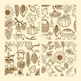 Set of seamless patterns of autumn elements of nature handmade. Elements of the design for Thanksgiving and the Feast of Autumn. stock illustration