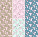 Set of 4 Seamless patterns background Stock Photo