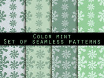 Set seamless patterns. Color mint. The pattern for wallpaper, bed linen, tiles, fabrics, backgrounds. Stock Photo
