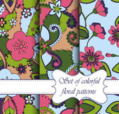 Set of seamless patterns colorful floral vector illustration