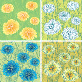 Set of seamless patterns with daisy flowers.  Stock Image