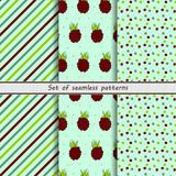 Set of seamless patterns,dewberry, Royalty Free Stock Photo