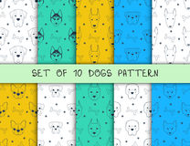 Set of 10 seamless patterns with different breeds dogs Stock Photo