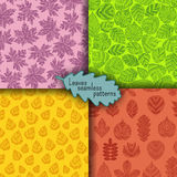 Set of seamless patterns with different tree leaves such as oak and maple, chestnut and birch, aspen and linden Royalty Free Stock Photos