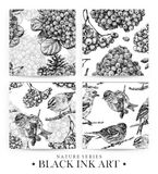 Set of seamless patterns with dotted flowers, birds and plants drawn by hand with black ink Stock Image