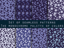 Set of seamless patterns with flowers. Shades of blue, purple. Violet colors. Vector Stock Photos