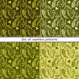 Set of seamless patterns of fores Stock Image