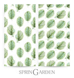 Set of seamless patterns with green leaves drawn by hand with crayons. Painted by hand with colored pencils illustration isolated on white background. Romantic vector illustration