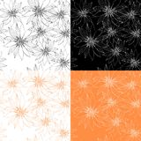 Set of seamless patterns with hand drawn flowers. Stock Photography