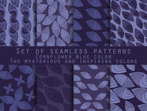 Set of seamless patterns in the Indian style. Cornflower blue, navy blue, mysterious and inspiring. Royalty Free Stock Image