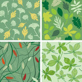 Set of seamless patterns with leaves Stock Photo