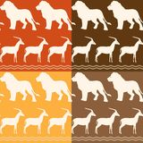 Set of seamless patterns with lion and gazelle Royalty Free Stock Image