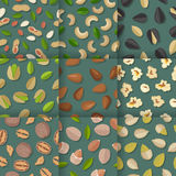 Set of Seamless Patterns with Nuts and Seeds. Stock Photography