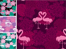 Set of seamless patterns with palm and flamingos. R Royalty Free Stock Photography