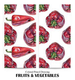 Set of seamless patterns with red peppers drawn by hand with colored pencil. Healthy vegan food. Fresh tasty vegetables painted from nature Royalty Free Stock Photos