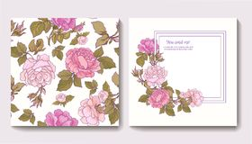 Set of seamless patterns with rose flowers and greeting birthday Stock Photos