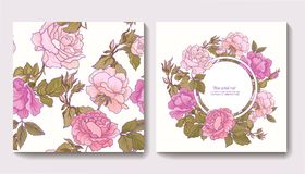 Set of seamless patterns with rose flowers and greeting birthday Stock Photography