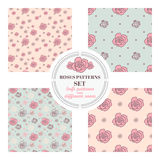 Set of seamless patterns with roses on different backgrounds vector illustration
