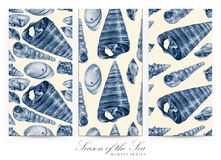Set of seamless patterns with seashells drawn by hand with pencil Stock Photo