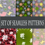 Set of seamless patterns of the six samples. Floral and abstract patterns, vector graphics Stock Photo