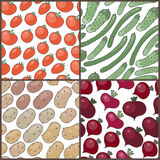 Set of seamless patterns with vegetables: tomatoes Stock Photos