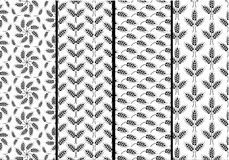 Set of seamless patterns with wheat ears. Black and white agricu Stock Images