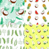 Set of seamless summer patterns.. Backgrounds with leaves of a palm tree, fruits, flowers and coconuts. Vector illustration. Easy to use for backdrop, textile Royalty Free Stock Photos