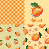 Set seamless texture with apricot Royalty Free Stock Photos