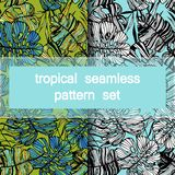 Set of seamless tropical patterns of hand-drawn palm and monstera deliciosa leaves.  Stock Photo