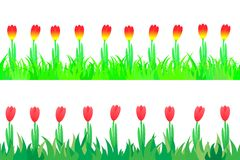 Set of seamless the tulips in the grass. Stock Photo