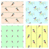Set of seamless vector patterns with animals. Royalty Free Stock Images