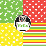 Set of seamless vector patterns. Set of seamless vector patterns with funny pug Royalty Free Stock Photography
