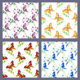 Set of seamless vector patterns with insects, colorful backgrounds with butterflies Royalty Free Stock Images