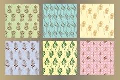 Set  of seamless vintage hand drawn ink  herbal patterns Stock Photos