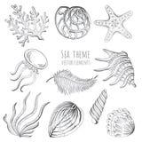 Set of seashells, starfish and jellyfish on white background for design. Set of seashells, starfish and jellyfish on white background for design Royalty Free Stock Images