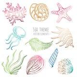 Set of seashells, starfish and jellyfish on white background for design. Set of seashells, starfish and jellyfish on white background for design Stock Photos